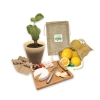 Eco-friendly Homeware & Lifestyle