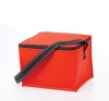 Non-Woven Lunch Buddy Cooler