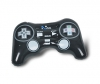 Playstation Controller Inflatable