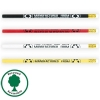 Rubber Tipped Recycled Newspaper Unsharpened Lead Pencil
